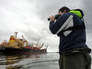 Porto monitora animais marinhos na Baía de Paranaguá