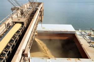 Porto de Paranaguá carrega primeiro navio com soja da nova safra