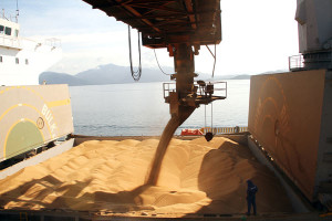 Milho e açúcar puxam exportações do Porto de Paranaguá